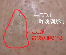 20140202porori4.jpg