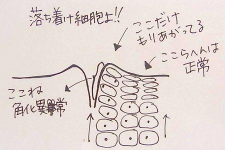 kakukaizyou.jpg