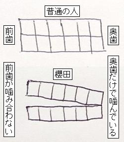 kamiawase.jpg