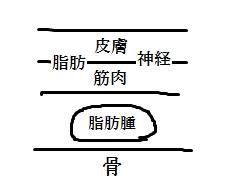 siboshu8.jpg