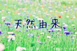 tennengousei2