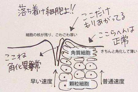 kakukaizyousetsumei